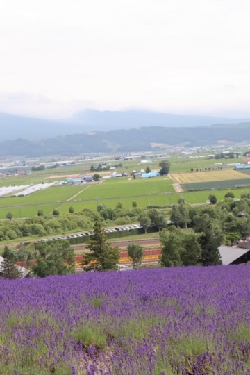furano114_Fotor.jpg