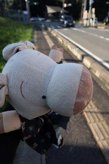 haibara102_Fotor.jpg