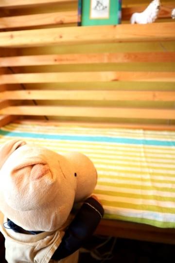 lion20_Fotor.jpg