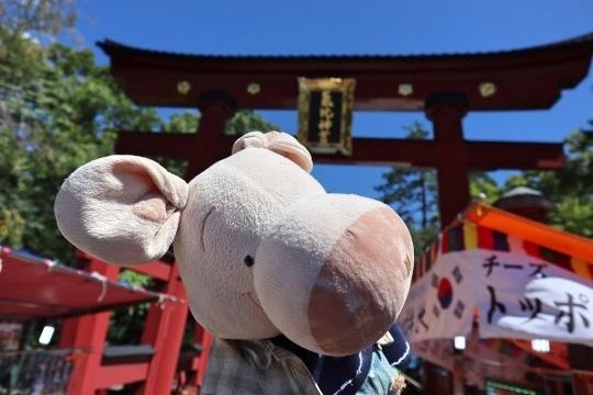 mizushima102_Fotor.jpg
