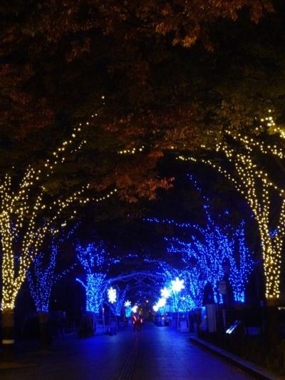 nakanoshima4_Fotor.jpg
