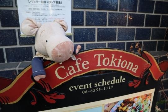 tokiona29.jpg